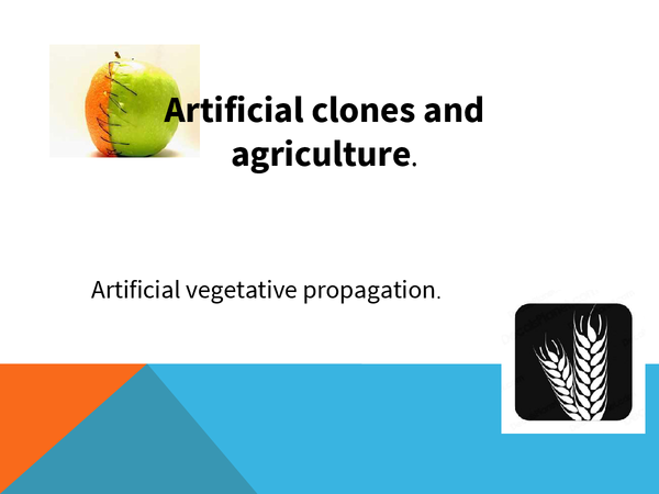 Preview of Agriculture and vegetative propagation