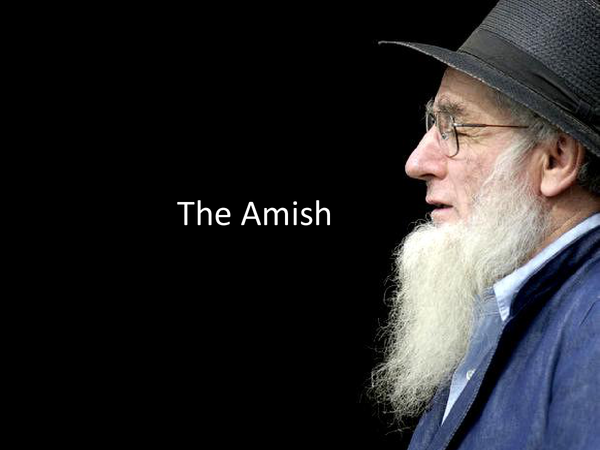 Preview of Amish Lifestyle