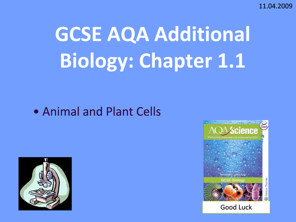 Preview of Animal and Plant Cells
