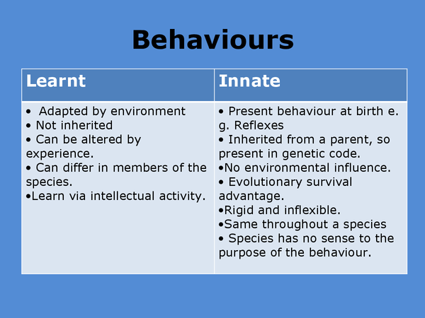 Preview of Animal Behaviours