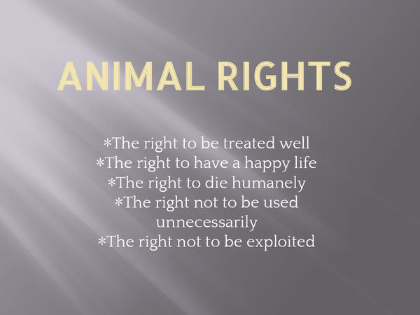 Preview of Animal Rights