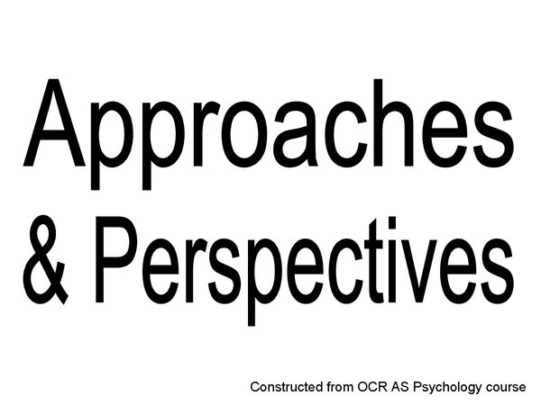Preview of Approaches and Perspectives powerpoint key points!