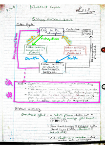 Preview of AQA A2 Biology Revision Notes - Unit 4 Nutrient Cycles (3.4.6)