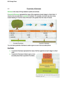 Preview of AQA Additional Science Biology - Energy Flows