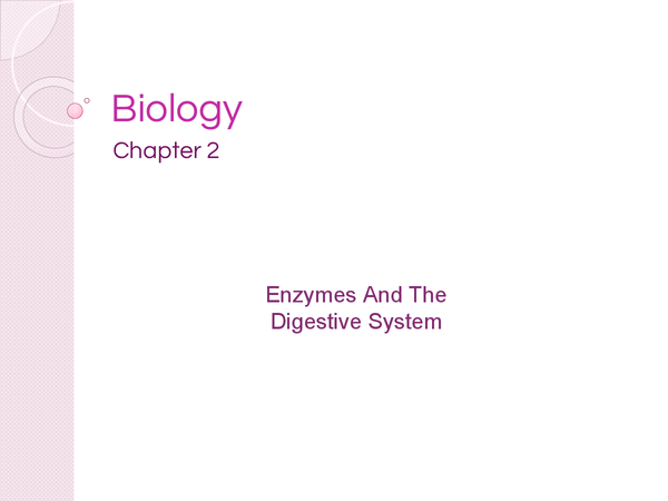 Preview of AQA AS Biology Chapter 2 - Enzymes And The Digestive System - Revision Cards