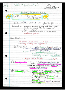 Preview of AQA AS Biology Revision Notes - Unit 1 Cell Structure & Movement of Molecules (3.1.3)