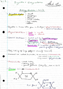 Preview of AQA AS Biology Revision Notes - Unit 1 Enzymes & Digestion (3.1.2)