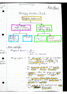 Preview of AQA AS Biology Revision Notes - Unit 1 Immunity (3.1.6)