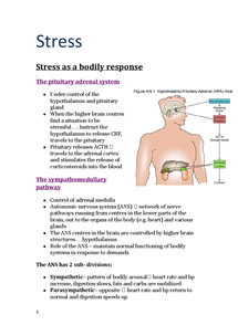 Preview of AQA AS Psychology A Unit 2- Stress notes