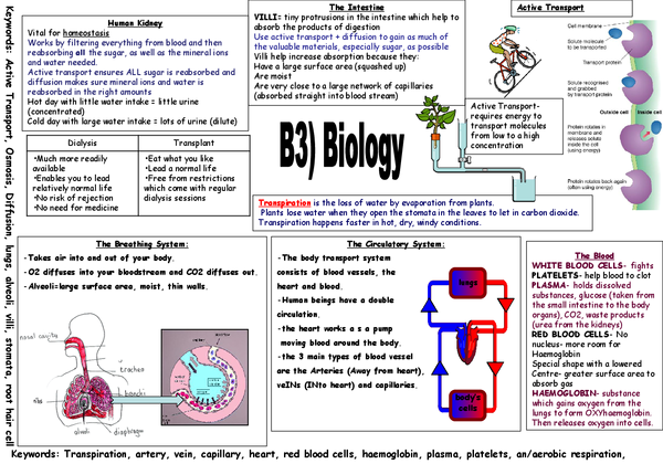 higher biology unit 3 essays
