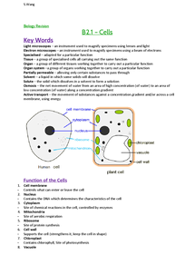 Preview of AQA Biology, B2 - Cells
