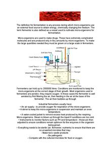 Preview of AQA Biology GCSE: Unit 3 Fermenters