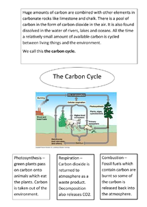 Preview of AQA Biology Unit 2 - The Carbon Cycle
