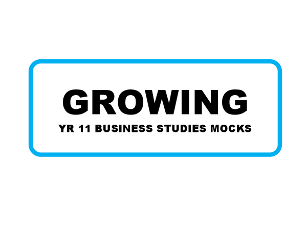 as business studies unit 2 coursework