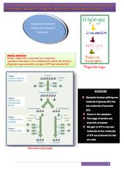 cycles in biology essay aqa