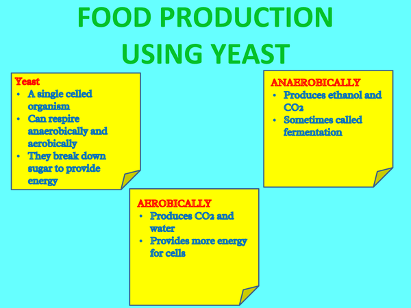 Preview of AQA UNIT 3 - food production