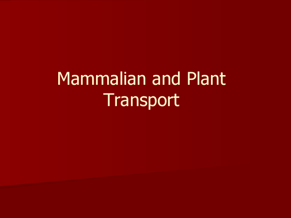 Preview of AS Biology Mammalian and Plant Transport