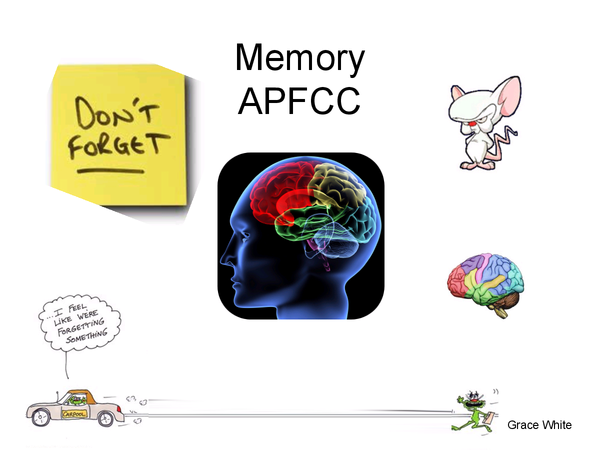 Preview of AS Psychology memory key studies