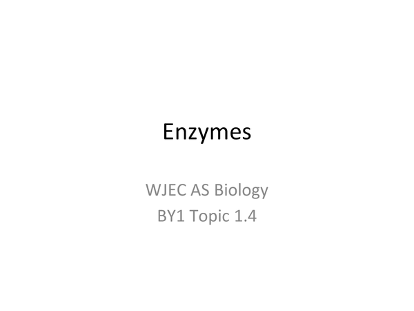 Preview of AS WJEC BY1 - 1.4 Enzymes