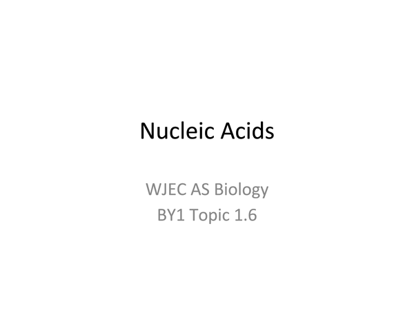 Preview of AS WJEC BY1 - 1.6 Nucleic Acids