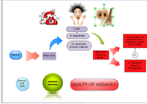 Preview of Assault,revision,flow diagram