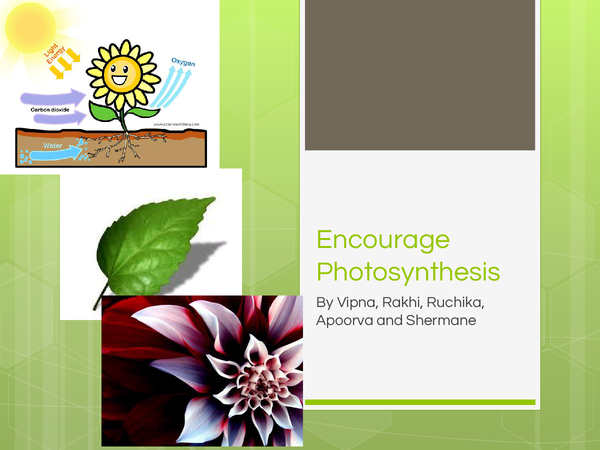 Preview of Atmosphere -Encouraging Photosythesis