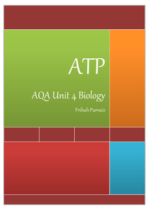 Preview of ATP