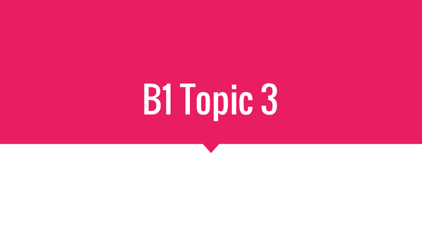 Preview of B1 Topic 3