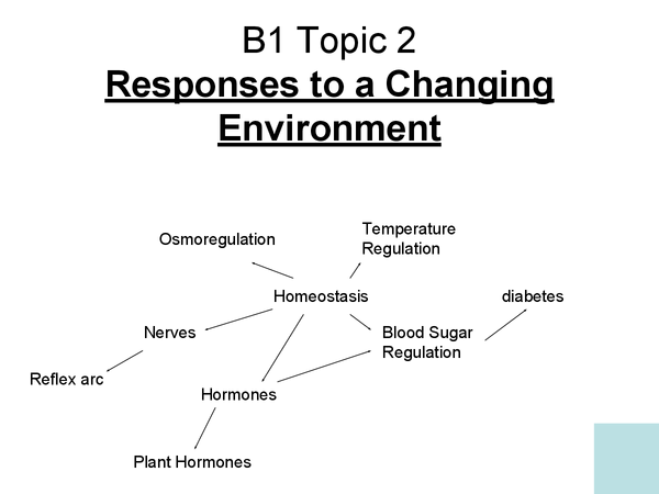 Preview of B1 Topic 2 Homeostasis