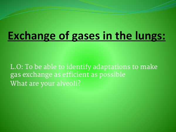 Preview of B2 exhange of gases in the lungs