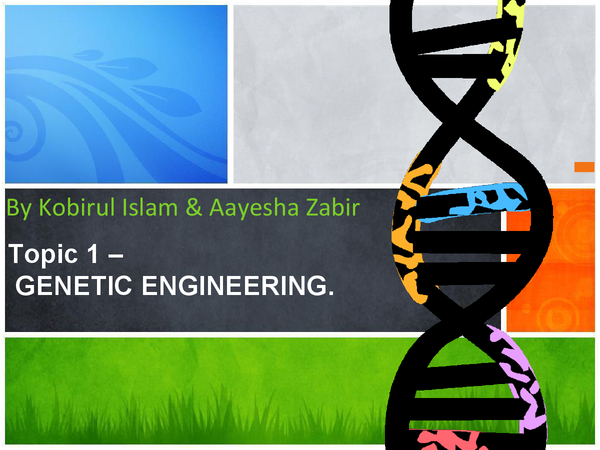 Preview of B2 edexcel genetic engineering
