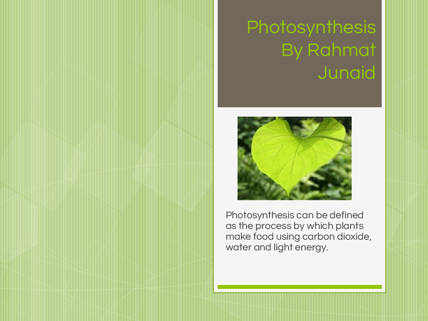 Preview of B2-Photosynthesis
