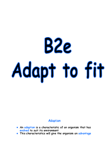 Preview of B2E REVISION NOTES