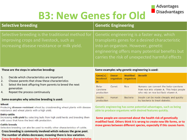 Preview of B3: New genes for old