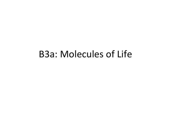 Preview of B3a Molecules of Life