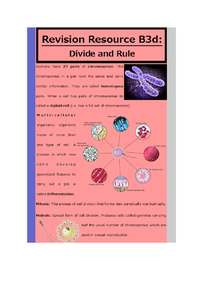 Preview of B3d: divide and rule