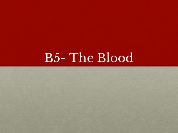 Preview of B5- The Blood