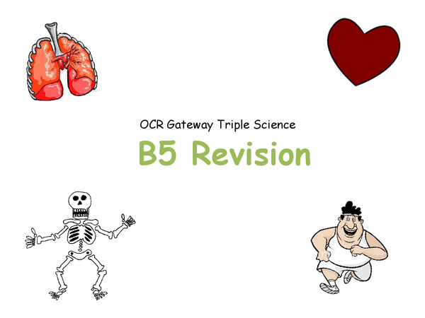 Preview of B5 Revision - OCR