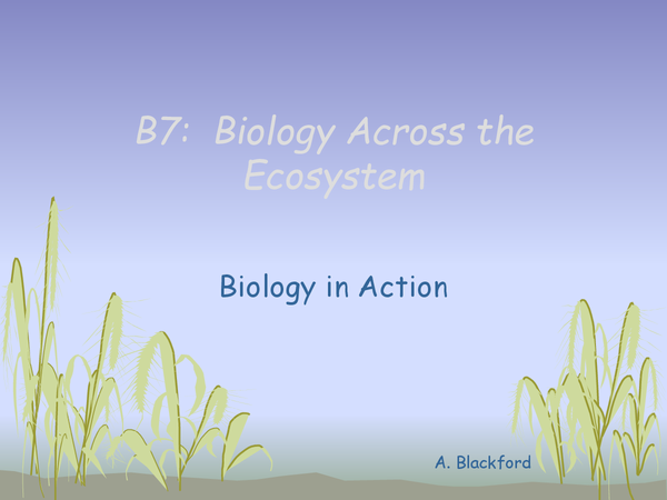 Preview of B7 - 21st century science rivision OCR