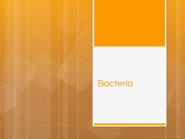Preview of Bacteria