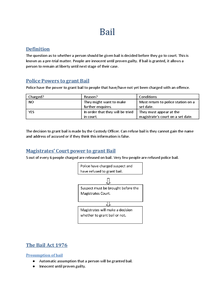 Preview of Bail REVISION SHEET
