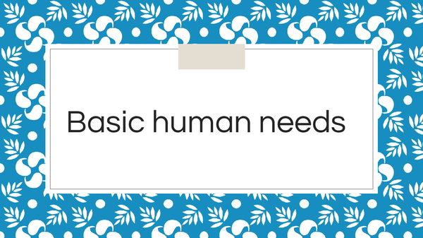 Preview of Basic Human Needs