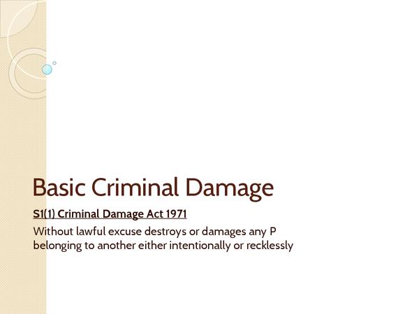 Preview of Basic Criminal Damage