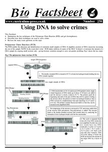 Preview of Bio Factsheet: Using DNA