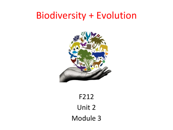 Preview of Biodiversity + Evolution Unit 2 Module 3 Revision