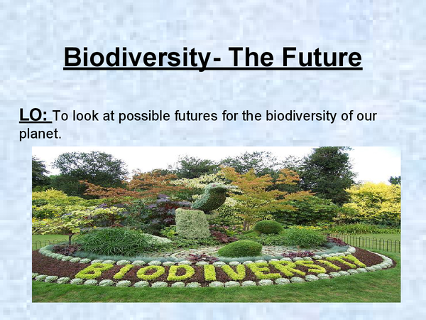 Preview of Biodiversity Powerpoint