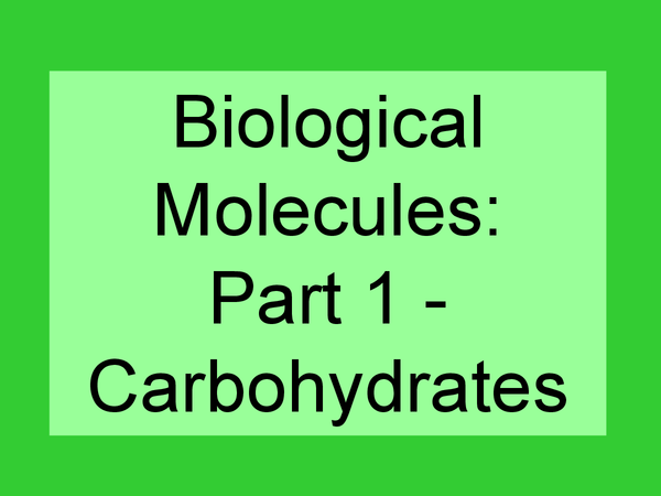 Preview of Biological Molecules - Carbohydrates - AS OCR Biology - Unit 2
