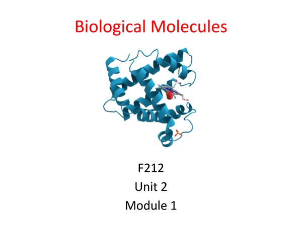 Preview of Biological Molecules Unit 2 Module 1 Revision