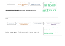 Preview of Biological Psychology - Sympathomedullary Pathway & Pituitary Adrenal Gland