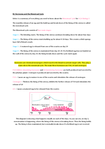 Preview of Biology 1 - The Menstrual Cycle